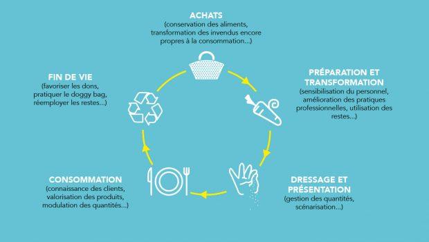 + Illustration du cycle de vie des aliments : - Achats (ex. conservation des aliments, transformation des invendus encore propres à la consommation...), - Préparation et transformation (ex. sensibilisation du personnel, amélioration des pratiques professionnelles, utilisation des restes...), - Dressage et présentation (ex. gestion des quantités, scénarisation...), - Consommation (ex. connaissance des clients, valorisation des produits, modulation des quantités...), - Fin de vie (ex. favoriser les dons, la pratique du doggy bag, le réemploi des restes...).