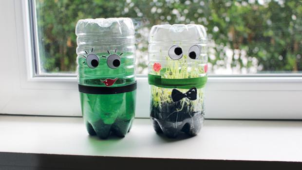 Photo de mini-serres créées à partir de bouteilles en plastique usagées