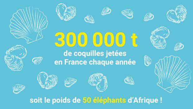 300 000 tonnes de coquilles sont jetées en France chaque année